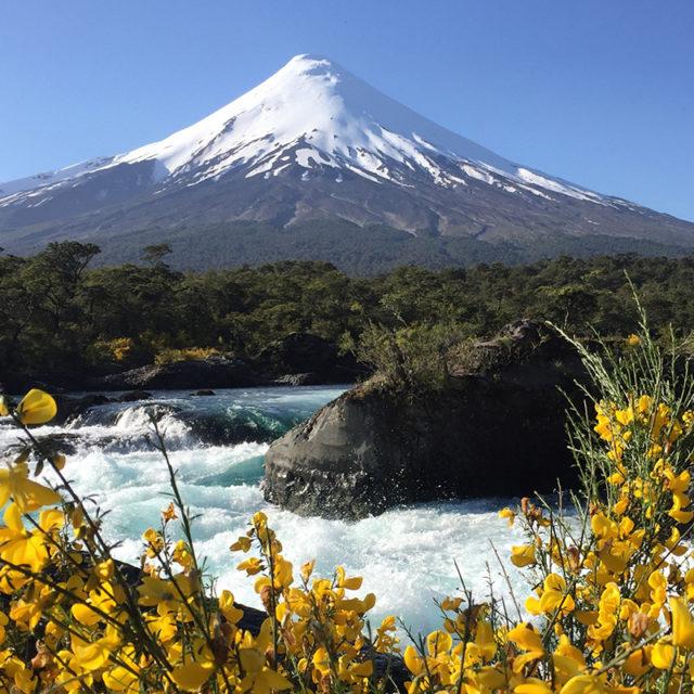 Patagonia tour 2021
